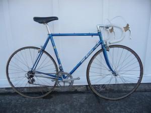 Eddy Merckx Professional
